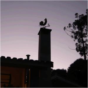 cachaca_artesanal_valedasflores_fotosconteudo4_650px